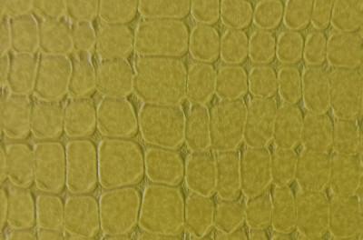 Мраморикс дизайн Кожа лессированная, по образцу