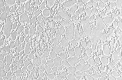 Мраморикс дизайн Кожа под окрас