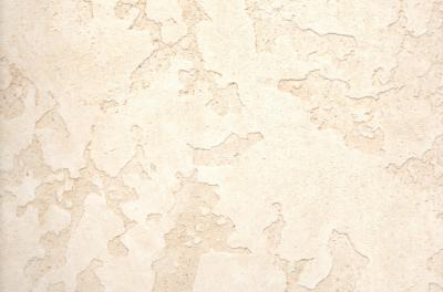 Фактурная декоративная штукатурка Карта мира лессированная, по образцу